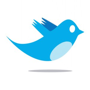twitter_bird_logo_by_ipotion-1